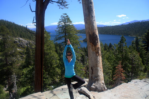 Tree Pose In Tahoe