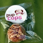 Pupcakes From Cups La Jolla